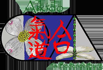 Aikido in Fredericksburg