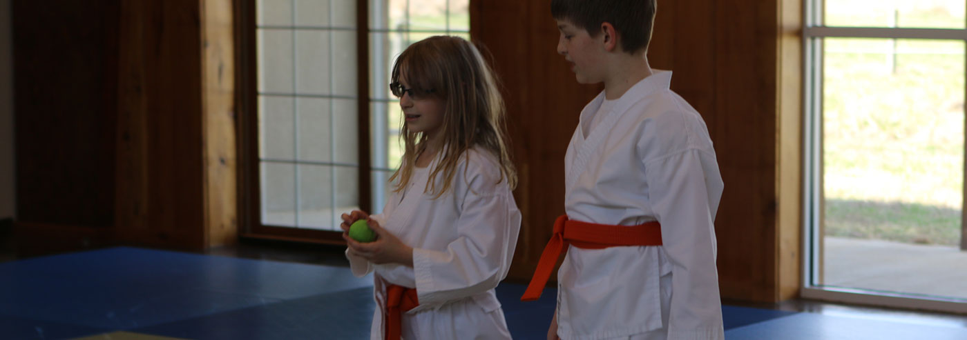 Aikido in Fredericksburg – Teaching and practicing the non